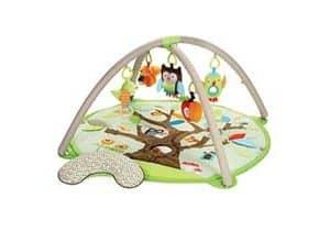 Skip Hop Baby Activity Playmat